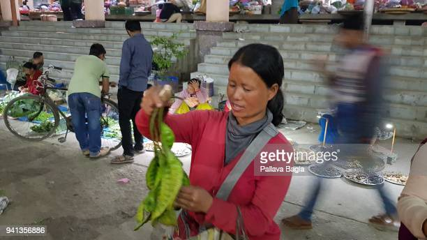 Women selling local delicacy beans of the Parkia speciosa a tree that bears edible and much valued beans used by the locals in the cooking A single...