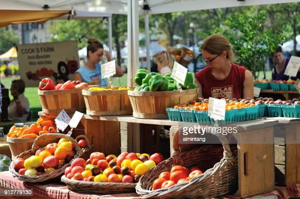 frauen stehen hinter ihrer gastronomischen ständen am copley square bauernmarkt in boston - copley square stock-fotos und bilder