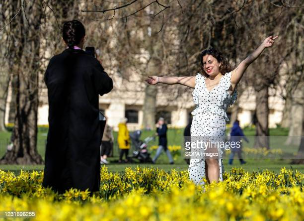 Women taking pics amongst the daffodils in St James' Park.