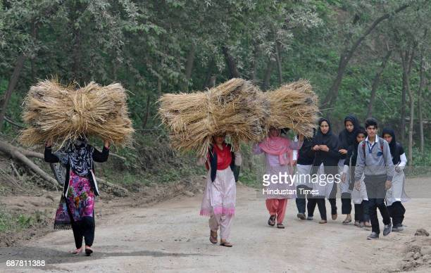 Women walk carrying grass and girls return from school on the spot at which Farooq Dar was tied up on an Army jeep in Utligam village in Budgam...
