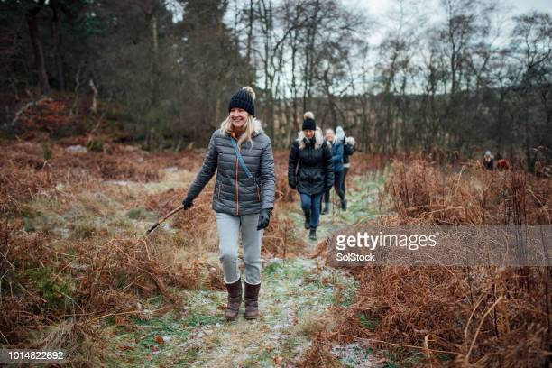 women walking in the winter - woodland stock pictures, royalty-free photos & images