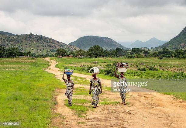 Women walking on a road through the fields. Yorro, close to Jalingo, Taraba State, Nigeria.
