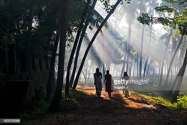 Women walking on sunlight through path