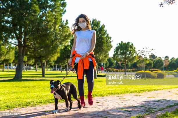 mulheres andando com seu cachorro no parque - andando - fotografias e filmes do acervo