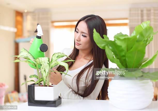 Frauen, die Blumen gießen