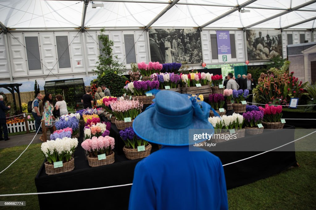 A women wearing a blue hat looks at the floral displays at the Chelsea Flower Show on May 22, 2017 in London, England. The prestigious Chelsea Flower Show, held annually since 1913 in the Royal Hospital Chelsea grounds, is open to the public from the 23rd to the 27th of May, 2017.