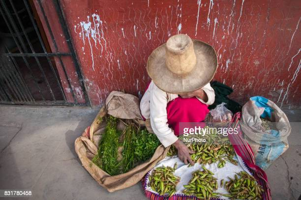 A women wearing a traditional Cajamarcan hat sells produce in a market in Cajamarca Peru Photo taken 9 March 2012Cajamarca Peru is home to the...
