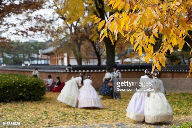 women wearing evening gowns at public park during autumn - jeonju stock photos and pictures