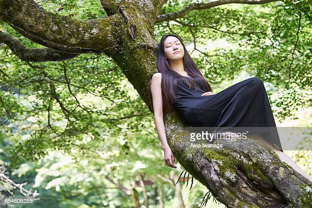 women who sleep on top of the tree - akio iwanaga ストックフォトと画像