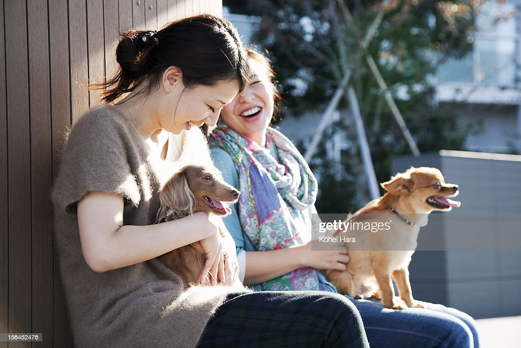 women with dogs relaxed on the bench ストックフォト getty images