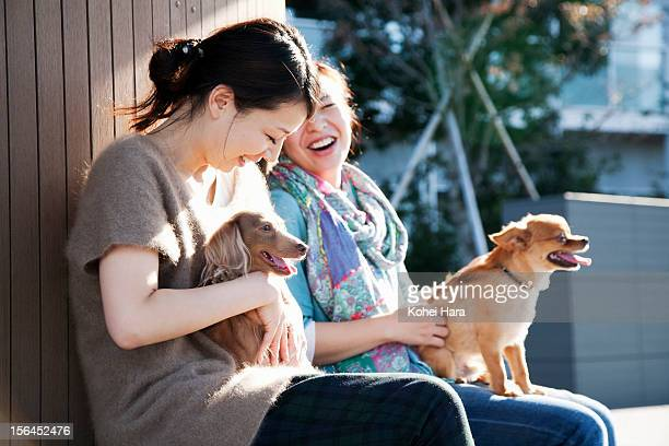 women with dogs relaxed on the bench - only mid adult women stock pictures, royalty-free photos & images