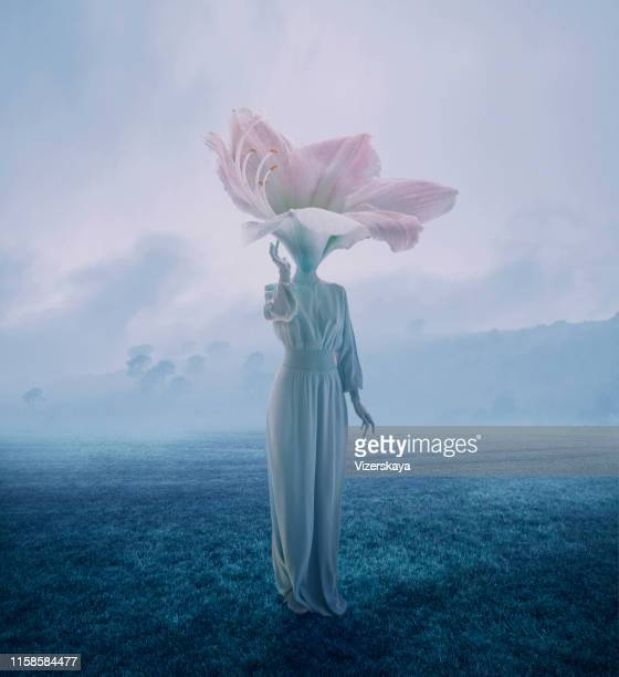 women with flower head - long dress stock pictures, royalty-free photos & images