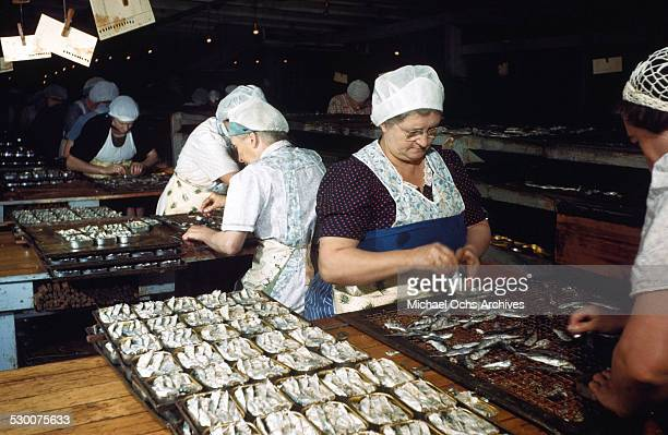 Women work in the local sardine cannery in Lubec Maine