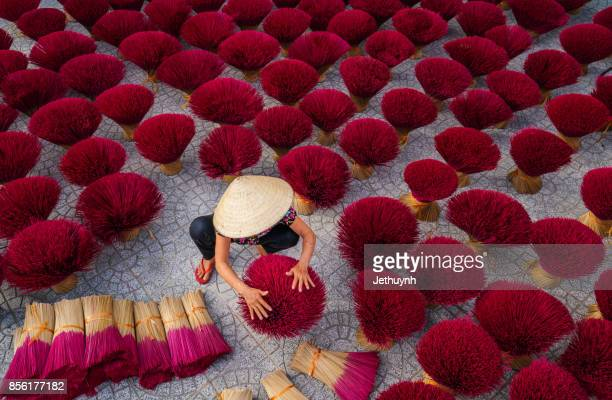 women worker with conial hat drying the incense sticks on yard outdoor - incense stock photos and pictures
