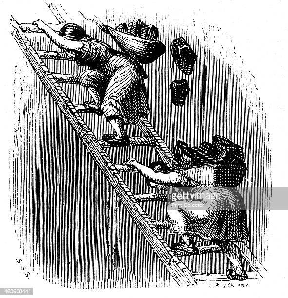 Women workers hauling coal to the surface up a ladder Leading woman has lost her load and the woman following is in danger of being hurt buy falling...