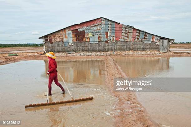 Women workers , Salt farm at Kep, Cambodia