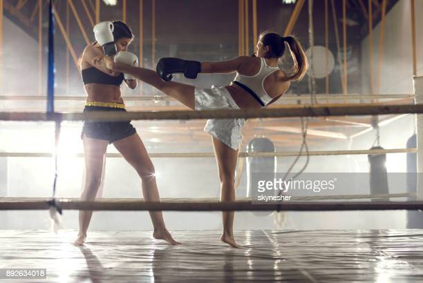 women's fight in a boxing ring! - muay thai stock pictures, royalty-free photos & images