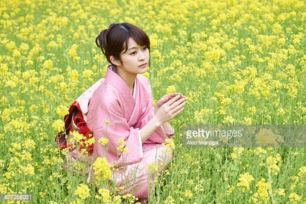 women's kimono sit in rape fields - akio iwanaga ストックフォトと画像