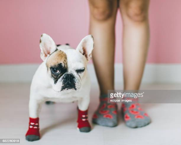 Womens Legs with dog side by side.