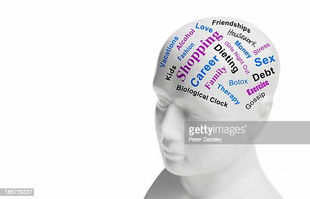 Womens phrenology head