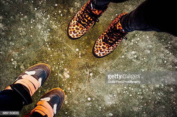 women's shoes from above - leopard print stock pictures, royalty-free photos & images