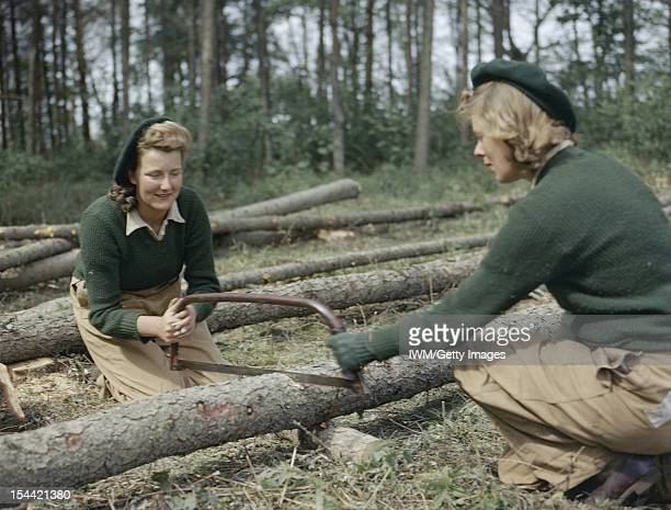 Women's Timber Corps Training Camp At Culford, Suffolk, Land Army girls sawing larch poles for use as pit props, circa 1942.