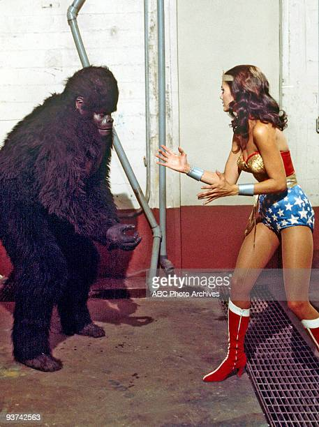 YEARS 'Wonder Woman vs Gargantua' Season One 12/18/76 Wonder Woman battled a trained gorilla sent by the Nazis