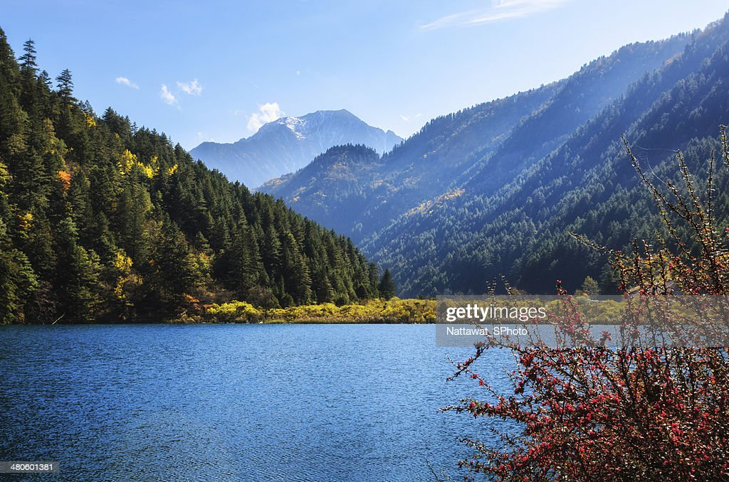 wonderful autumn in Jiuzhaigou : Stock Photo