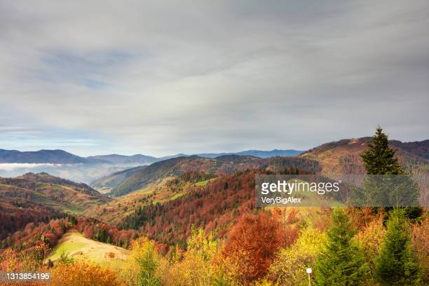 wonderful autumn landscape with beautiful blue sky and majestic clouds forest sunset beautiful fall season forest mountain sunset orange colors spirituality inspiration vacation concept - ukraine stock pictures, royalty-free photos & images