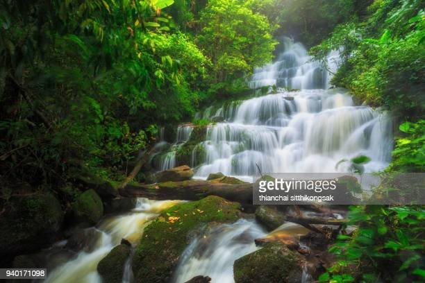 wonderful big waterfall in deep forest - new zealand stockfoto's en -beelden