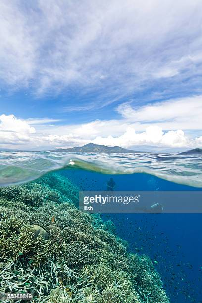 Wonderful Day for Diving, Bunaken Marine Park, North Sulawesi, Indonesia