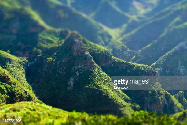 wonderful green landscape. anaga mountain range in the northeastern part of the island of tenerife in the canary islands. - subtropical climate stock photos and pictures