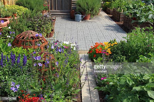 wonderful herb and flower garden - nasturtium stock pictures, royalty-free photos & images