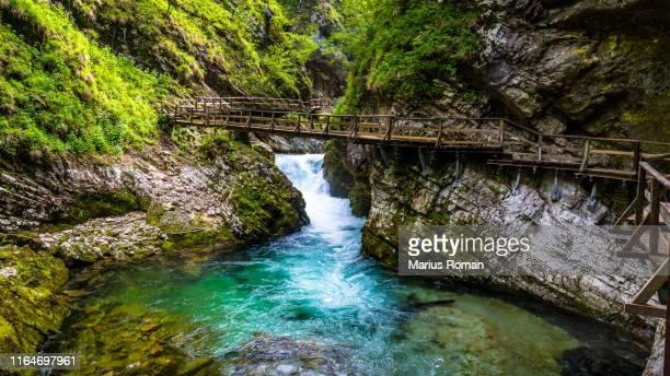 wonderful spring landscape with beautiful little waterfall in forest. waterfall at soteska vintgar, slovenia. the vintgar gorge in julian alps, near bled, slovenia. - slowenien stock-fotos und bilder