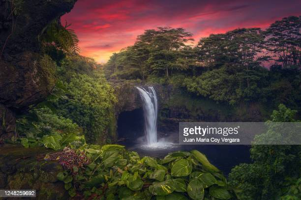 the wonderful colours of the evening at rainbow falls - hilo (hawaii, usa) - big island hawaii islands stock pictures, royalty-free photos & images