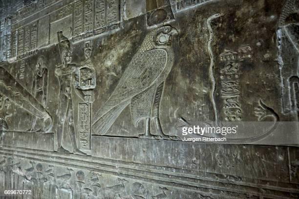 wonderful well-preserved reliefs inside dendera temple complex - tempelcomplex van dendera stockfoto's en -beelden