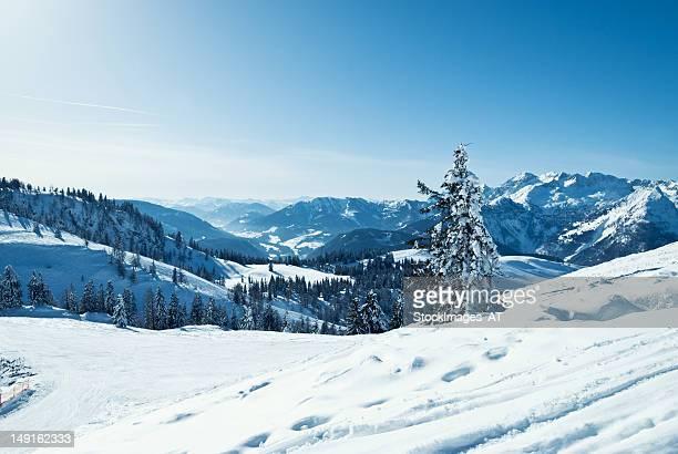 Schönen winter Landschaft in den österreichischen Alpen