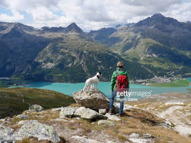 wonderlust - swiss alps stock pictures, royalty-free photos & images