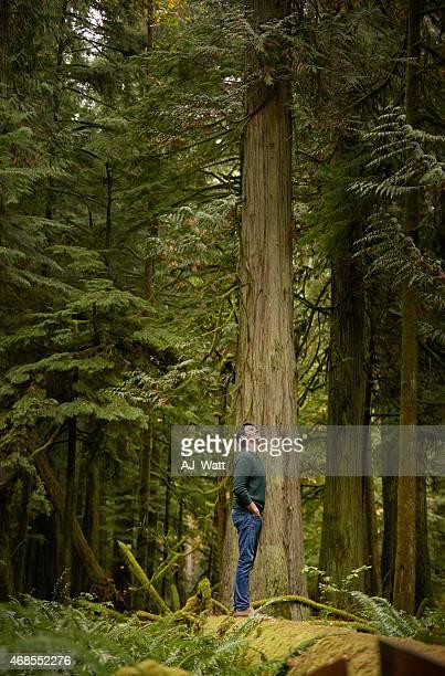 Émerveillement dans les bois