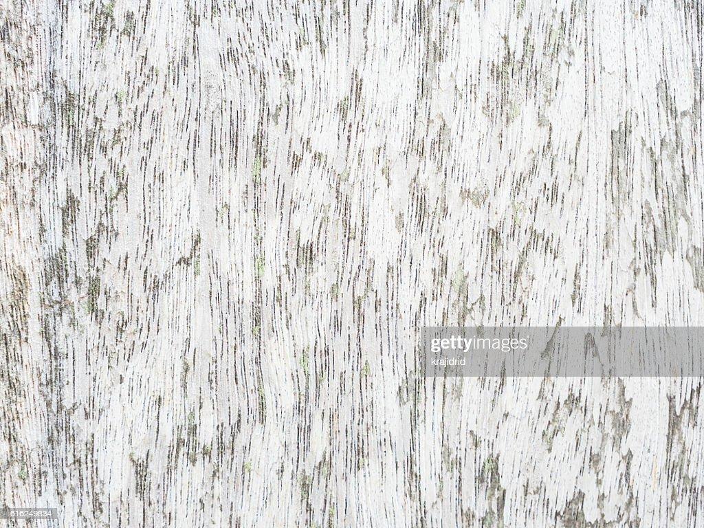 Wood background texture : Stock Photo