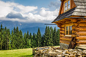Wood cottage with a beautiful forest and mountain views