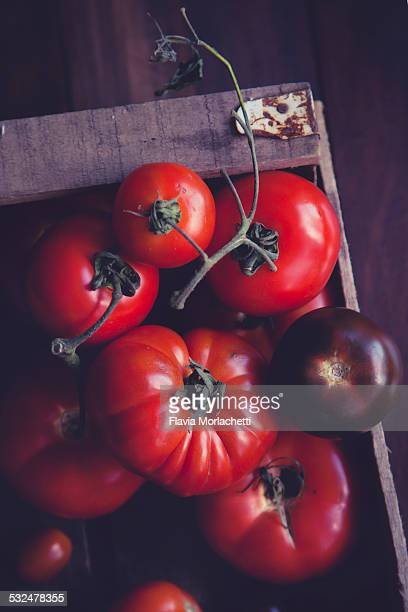 Wood crate with tomatoes varieties