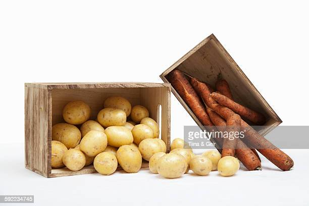 Wood crates filled with fresh carrots and potatoes