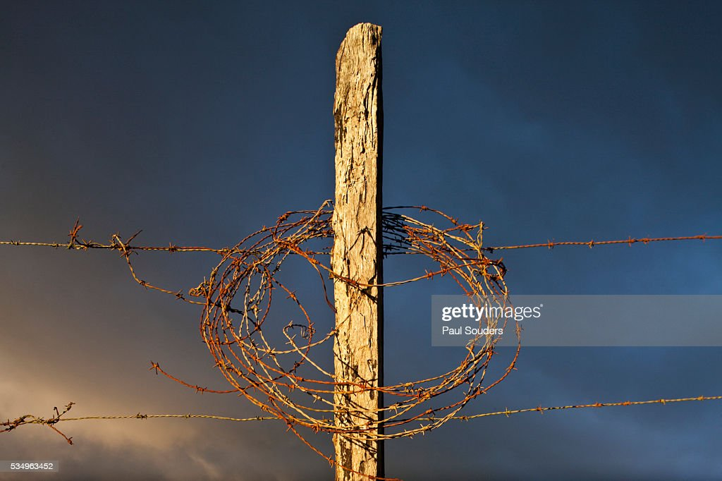 Wood Fence Post and Barbed Wire at Sunset in Costa Rica : Stock Photo
