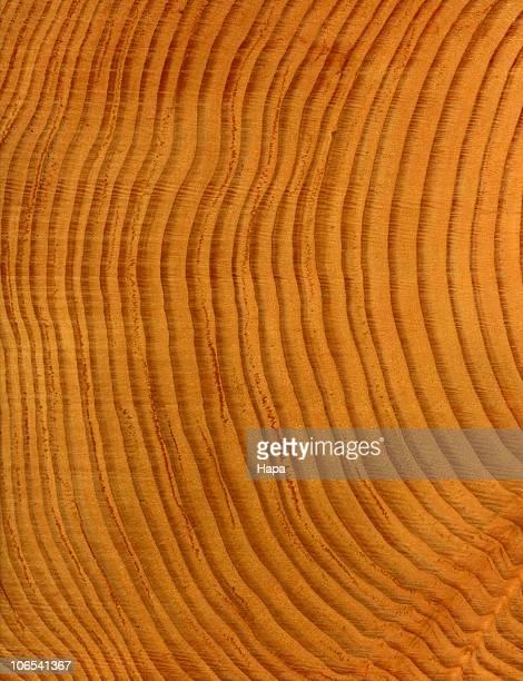 Wood grain Douglas Fir