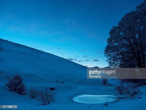 Wood in winter landscape at LessiniaMonti Lessini Vallagarina Trentino Italy Europe