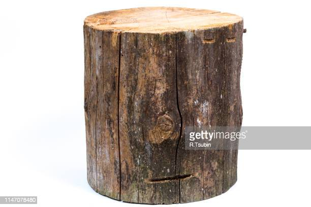 wood log isolated on a white background - log stock pictures, royalty-free photos & images
