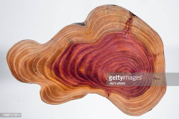 wood pattern - cross section stock pictures, royalty-free photos & images