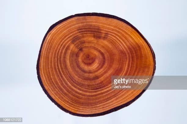 wood pattern - ceppo foto e immagini stock