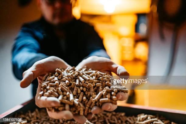 pellets de madera en manos - grano planta fotografías e imágenes de stock